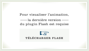 Télécharger Flash
